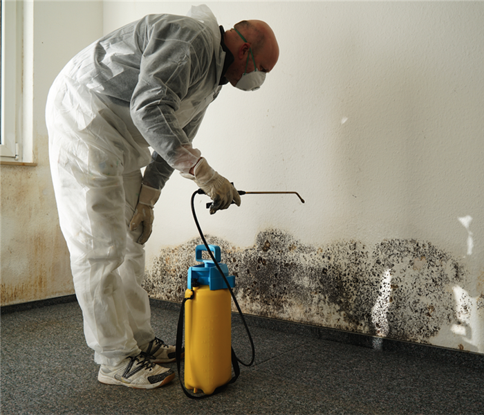 Why SERVPRO Removing Mold Requires the Right PPE