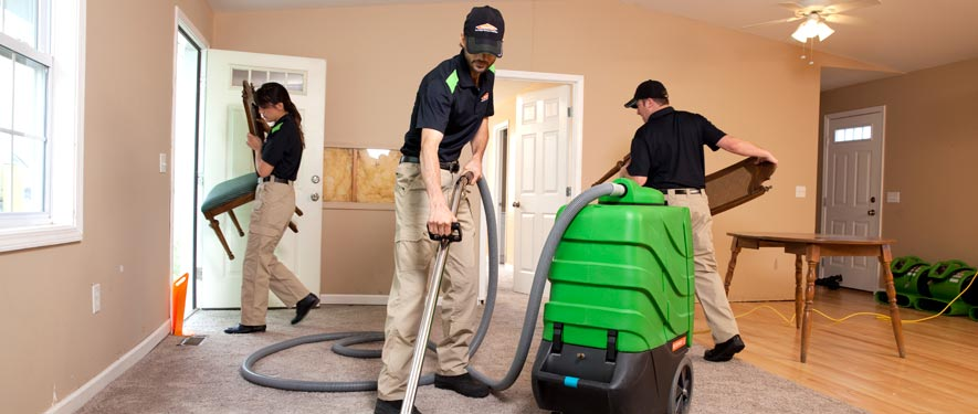 Layton, UT cleaning services